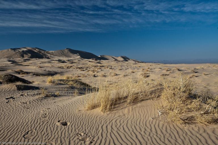 Mojave-Wüste, USA